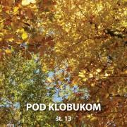 Pod Klobukom 13 Cover